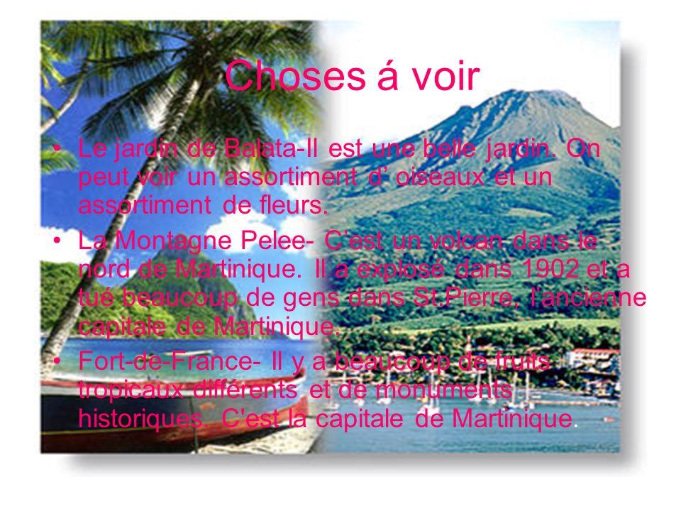 Choses á faire On peut… Faire de la planche á voile Faire du deltaplane Faire de la plongee sous-marine Faire de la plongee avec un tuba Dèguster des fruits tropicaux