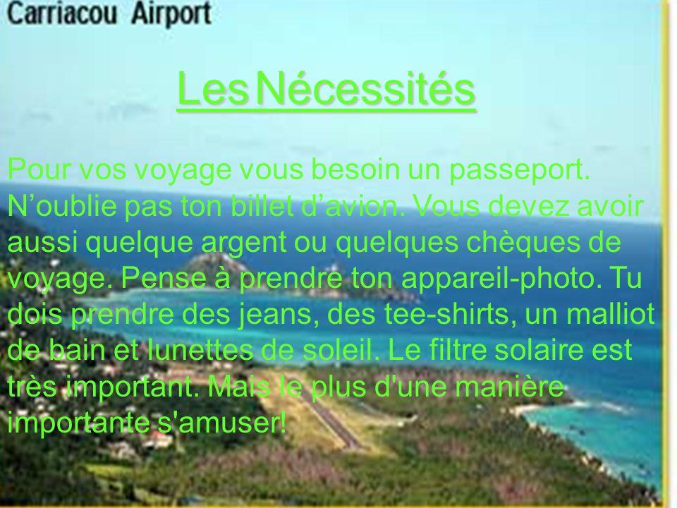 Les Nécessités Pour vos voyage vous besoin un passeport.