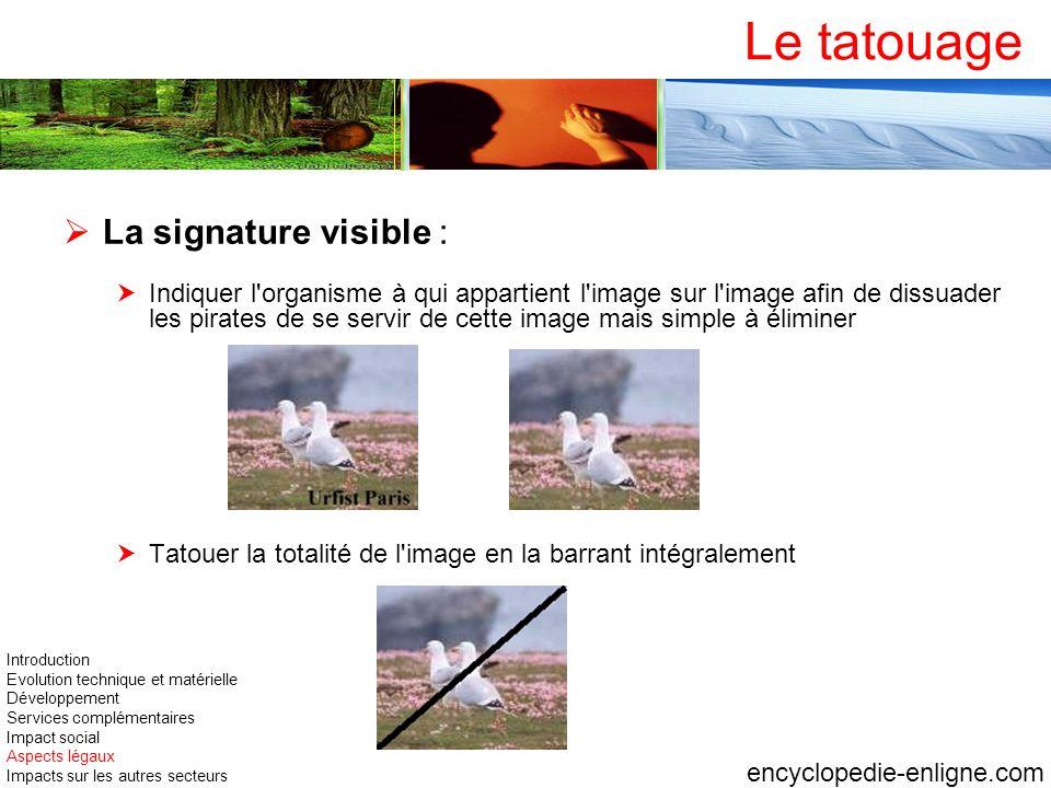 Le tatouage La signature visible : Indiquer l'organisme à qui appartient l'image sur l'image afin de dissuader les pirates de se servir de cette image