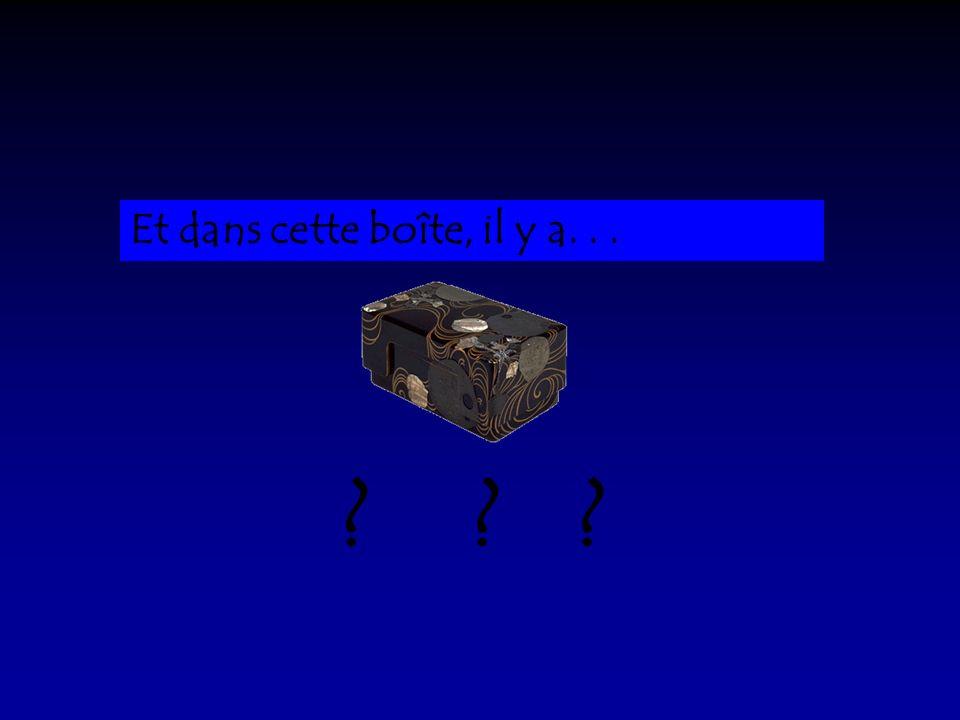 Dans cette chambre, il y a une boîte sombre, très sombre.
