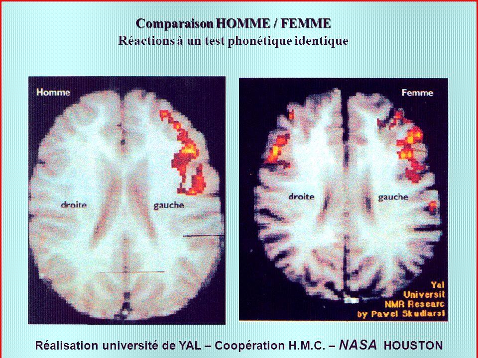 Comparaison HOMME / FEMME Réactions à un test phonétique identique Réalisation université de YAL – Coopération H.M.C. – NASA HOUSTON