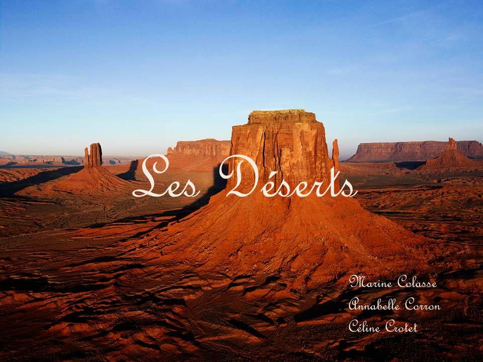 Les déserts chauds