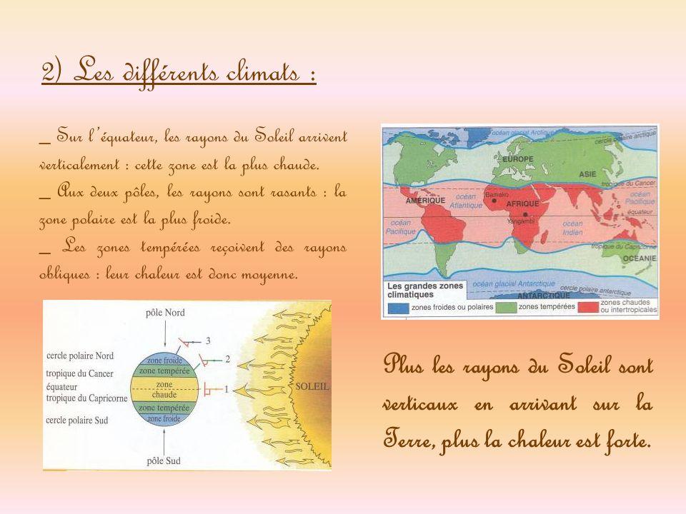 La vie La densité de la végétation dépend de la quantité deau disponible, de la force du vent et de la nature du sol.
