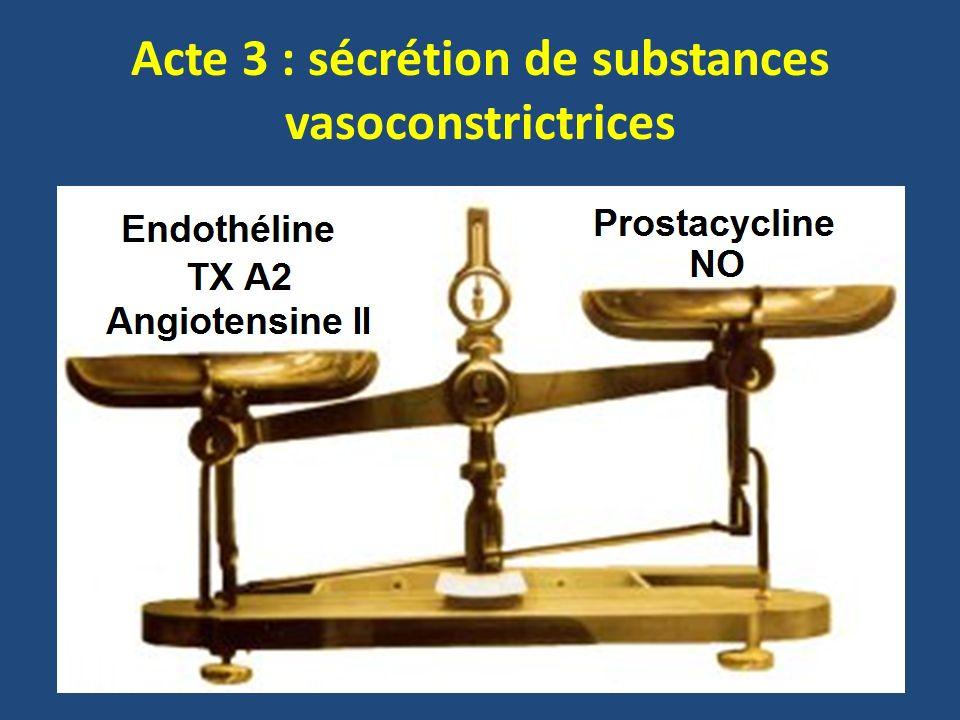 Acte 3 : sécrétion de substances vasoconstrictrices