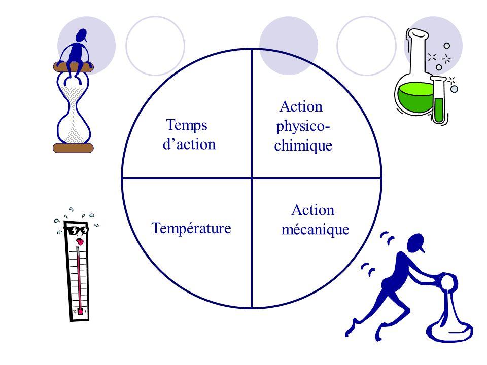 Action physico- chimique Action mécanique Température Temps daction