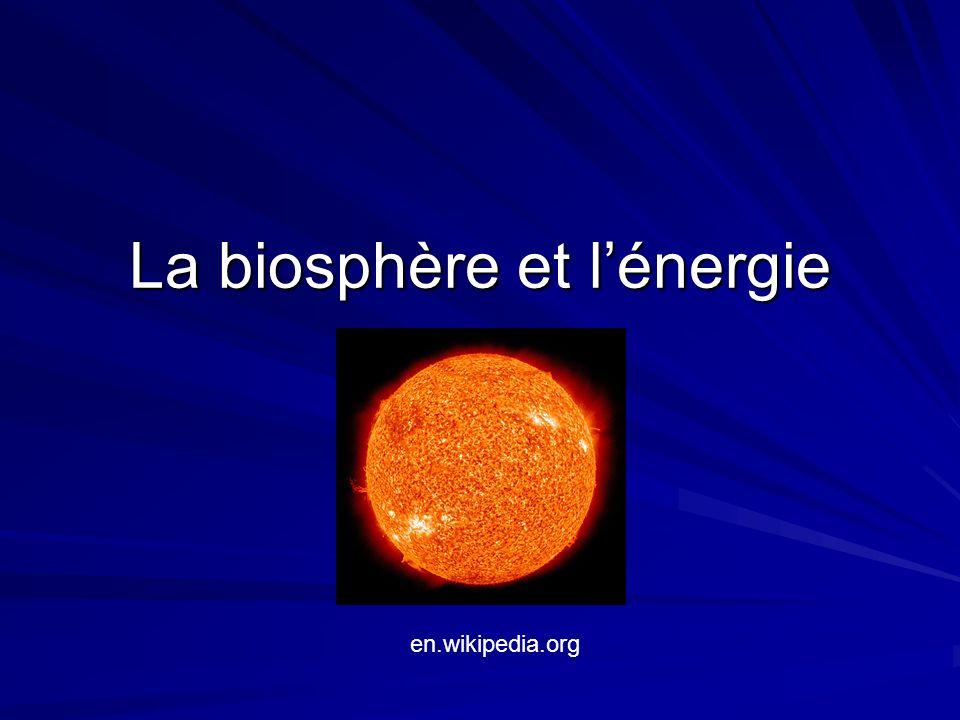 Lénergie rentre la cycle pendant la photosynthèse (du soleil) Lénergie parte de la cycle pendant la respiration (pour être utilisé par lorganisme).