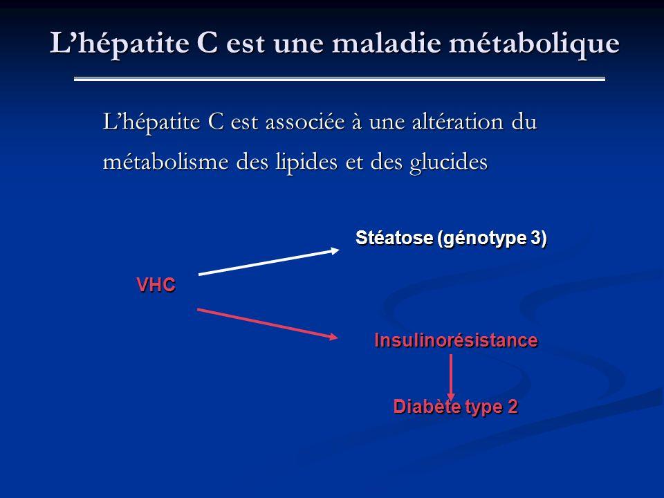 Lhépatite C est associée à une altération du métabolisme des lipides et des glucides Stéatose (génotype 3) Stéatose (génotype 3) VHC Lhépatite C est u