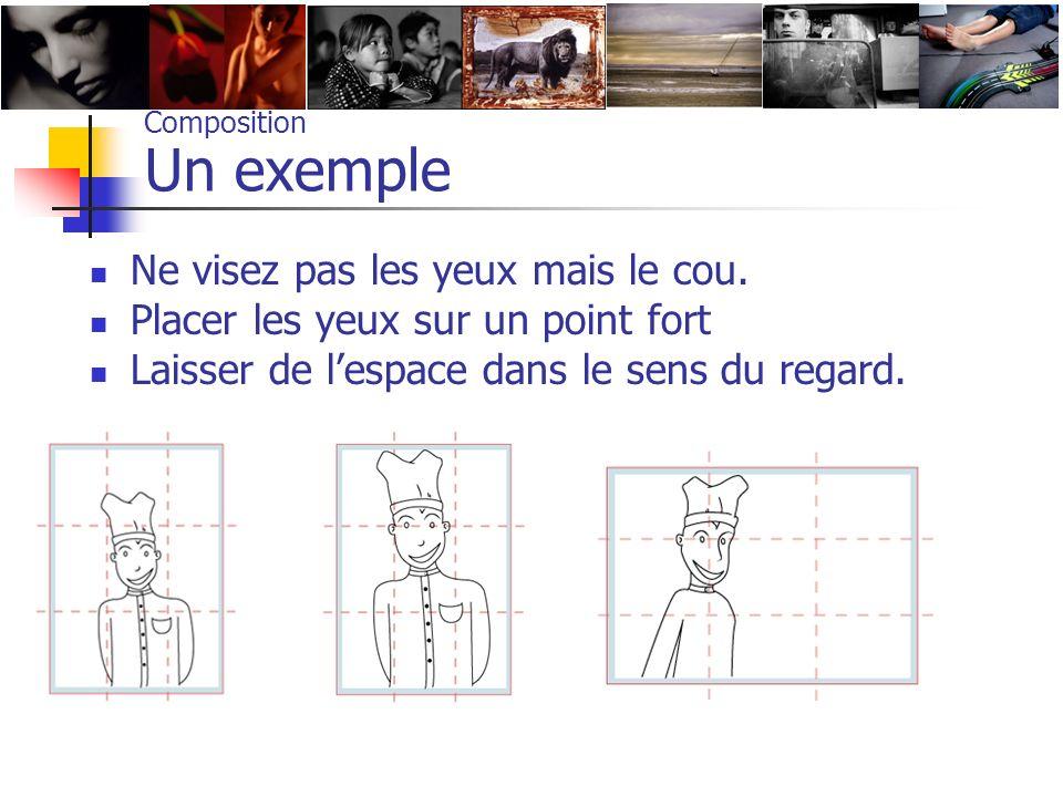 Composition Un exemple Ne visez pas les yeux mais le cou. Placer les yeux sur un point fort Laisser de lespace dans le sens du regard.