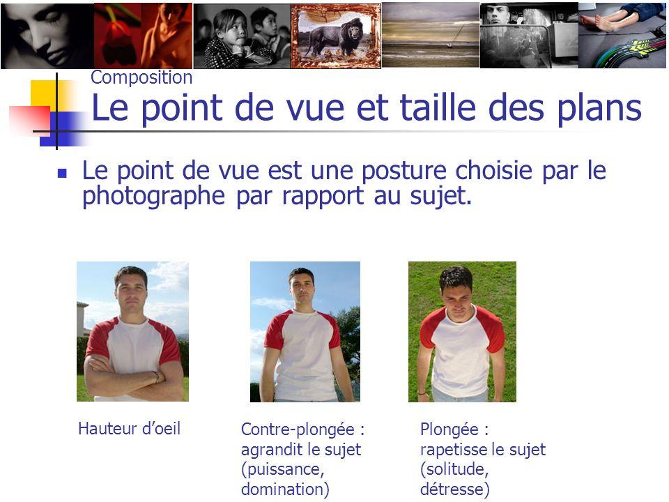 Composition Le point de vue et taille des plans Le point de vue est une posture choisie par le photographe par rapport au sujet. Hauteur doeil Contre-