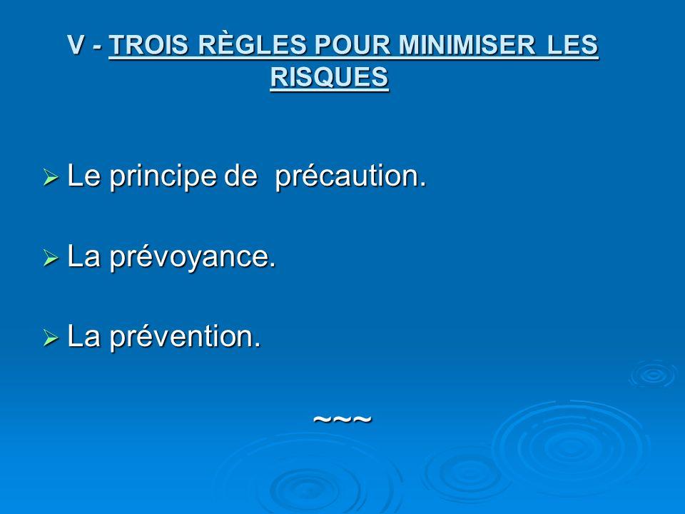 V - TROIS RÈGLES POUR MINIMISER LES RISQUES V - TROIS RÈGLES POUR MINIMISER LES RISQUES Le principe de précaution.