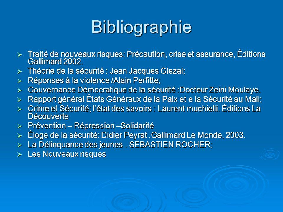 Bibliographie Traité de nouveaux risques: Précaution, crise et assurance, Éditions Gallimard 2002.