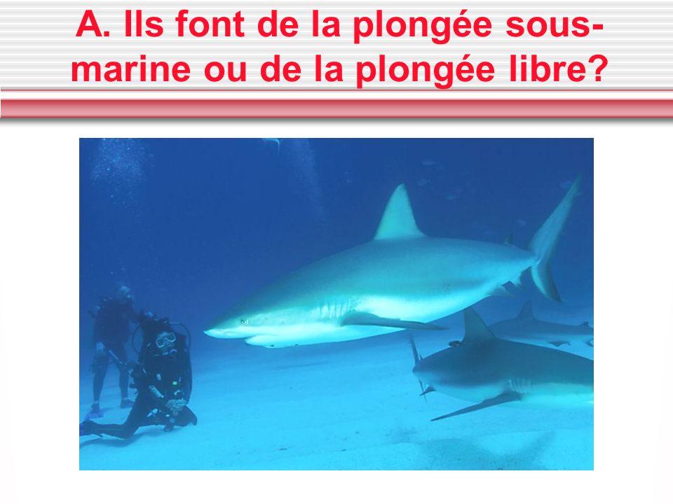 A. Ils font de la plongée sous- marine ou de la plongée libre?