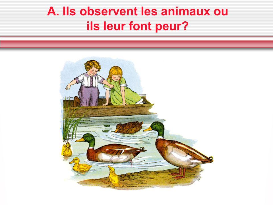 A. Ils observent les animaux ou ils leur font peur?