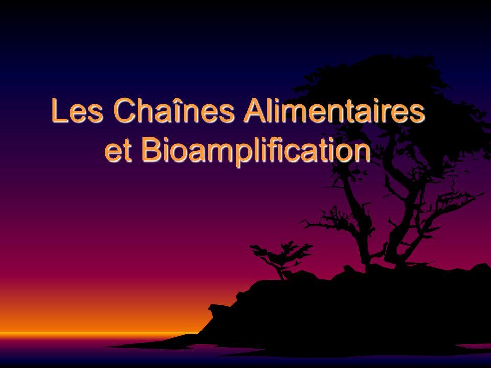 Les Chaînes Alimentaires et Bioamplification