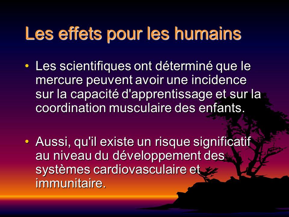 Les effets pour les humains Les scientifiques ont déterminé que le mercure peuvent avoir une incidence sur la capacité d'apprentissage et sur la coord