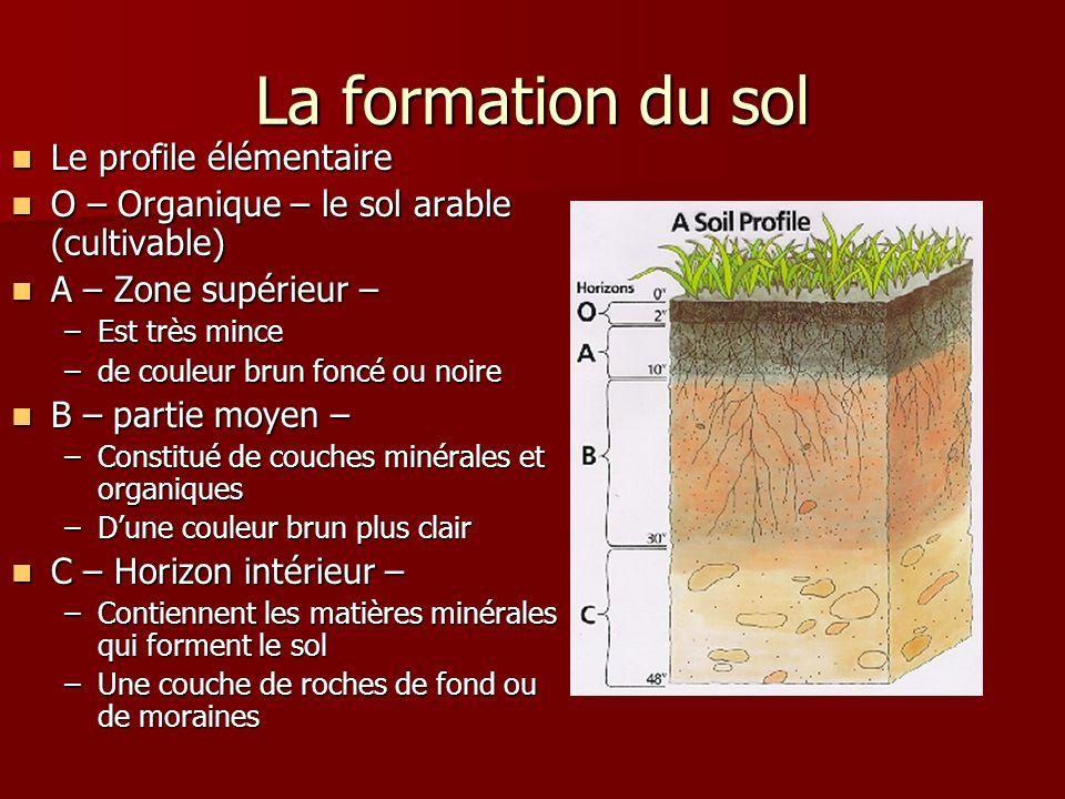 La formation du sol Le profile élémentaire Le profile élémentaire O – Organique – le sol arable (cultivable) O – Organique – le sol arable (cultivable