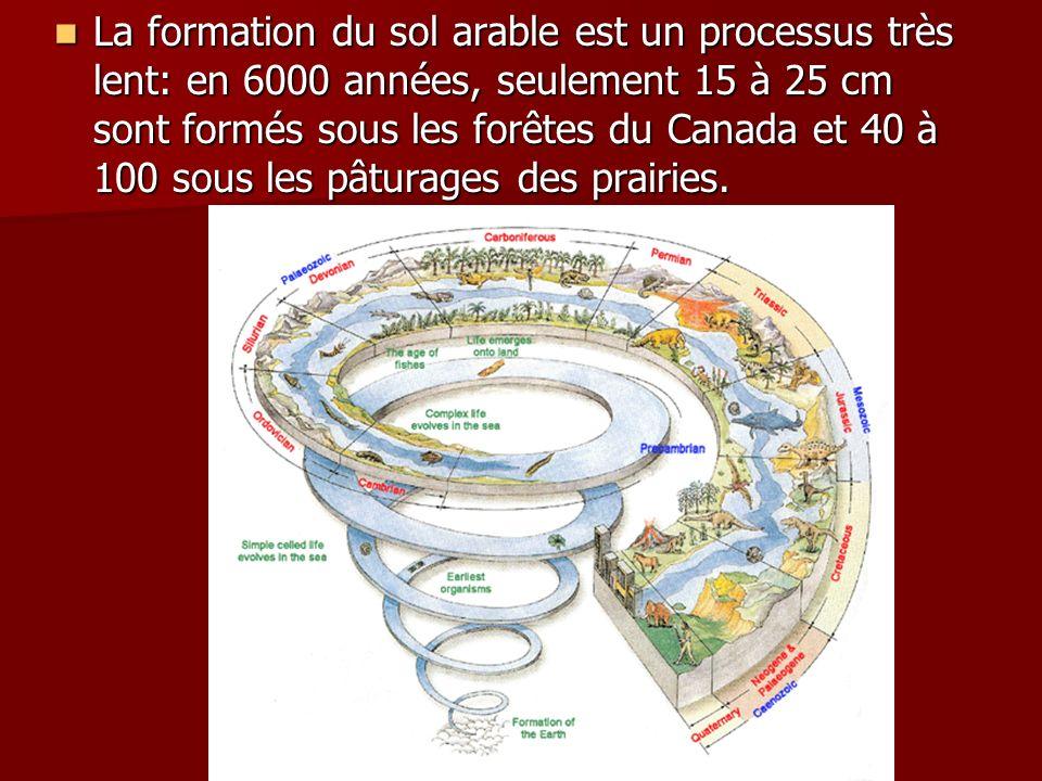 La formation du sol arable est un processus très lent: en 6000 années, seulement 15 à 25 cm sont formés sous les forêtes du Canada et 40 à 100 sous le