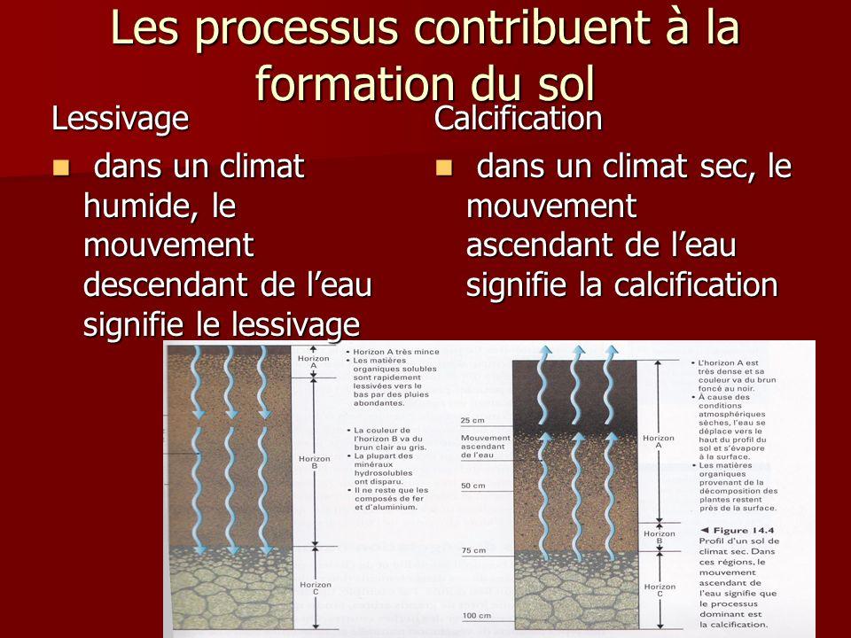 Les processus contribuent à la formation du sol Lessivage dans un climat humide, le mouvement descendant de leau signifie le lessivage dans un climat