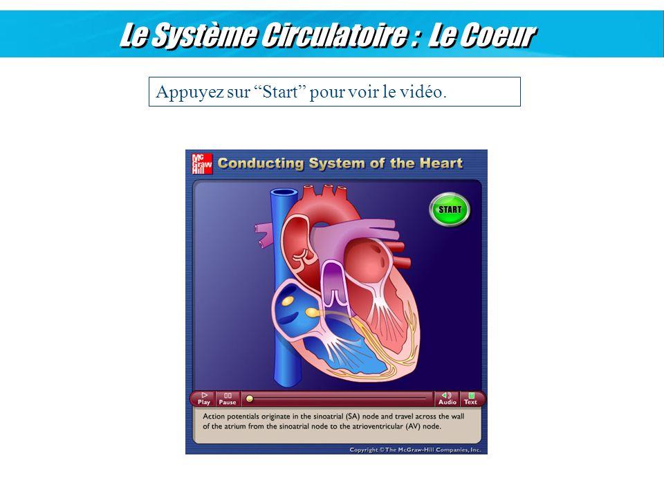 Le Système Circulatoire : Le Coeur Appuyez sur Start pour voir le vidéo.