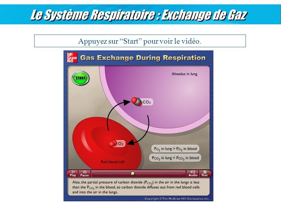 Le Système Respiratoire : Exchange de Gaz Appuyez sur Start pour voir le vidéo.