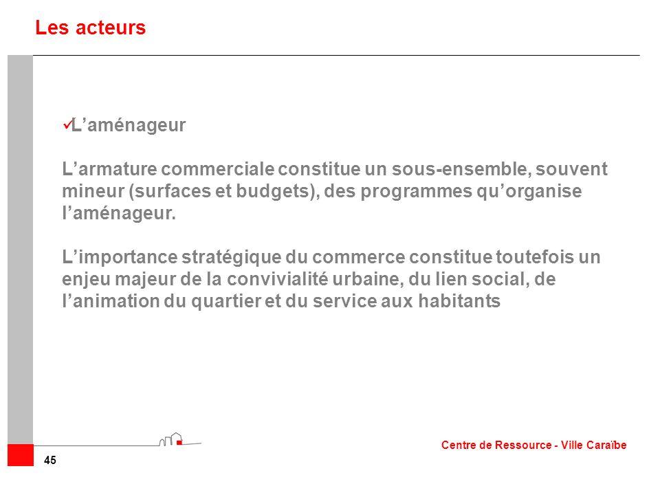 45 Laménageur Larmature commerciale constitue un sous-ensemble, souvent mineur (surfaces et budgets), des programmes quorganise laménageur. Limportanc
