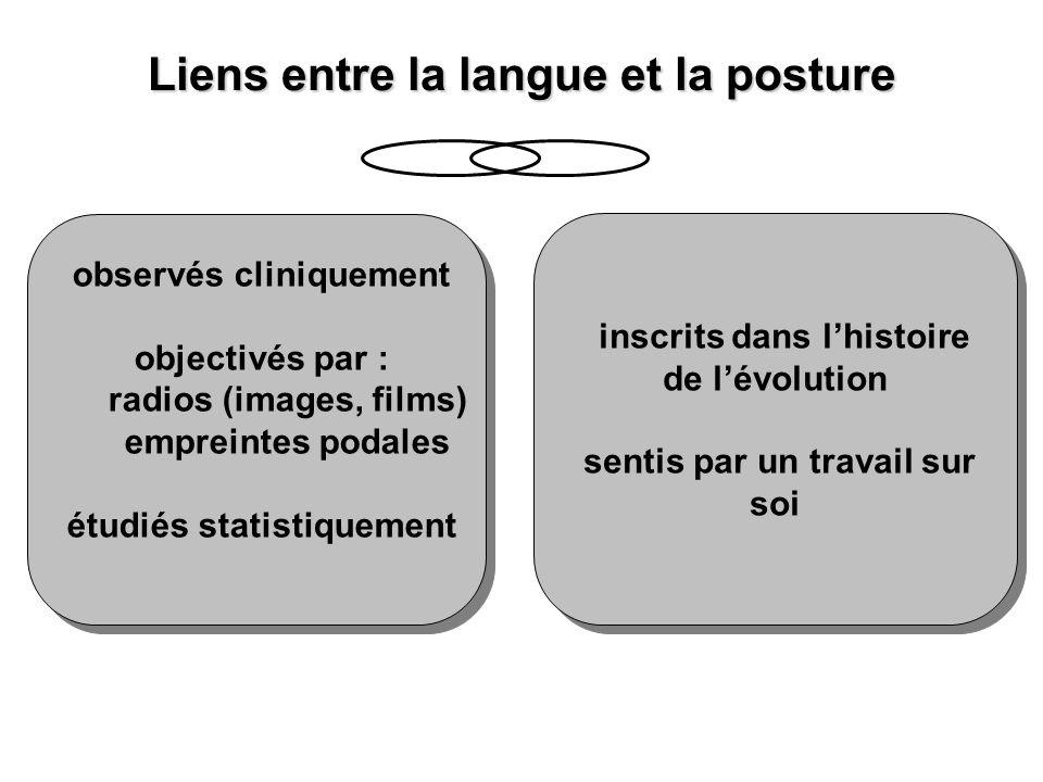 Liens entre la langue et la posture observés cliniquement objectivés par : radios (images, films) empreintes podales étudiés statistiquement observés