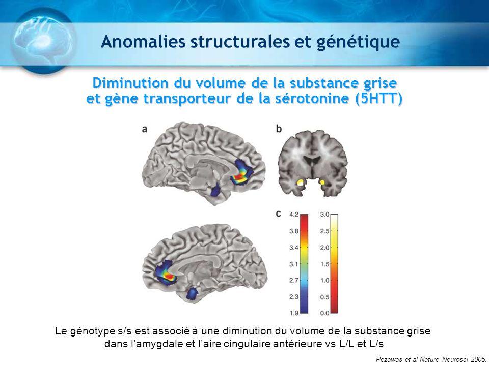 Diminution du volume de la substance grise et gène transporteur de la sérotonine (5HTT) Pezawas et al Nature Neurosci 2005. Le génotype s/s est associ
