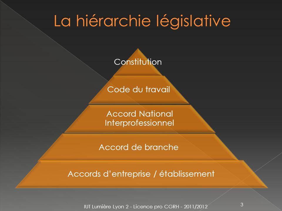 Constitution Code du travail Accord National Interprofessionnel Accord de branche Accords dentreprise / établissement IUT Lumière Lyon 2 - Licence pro