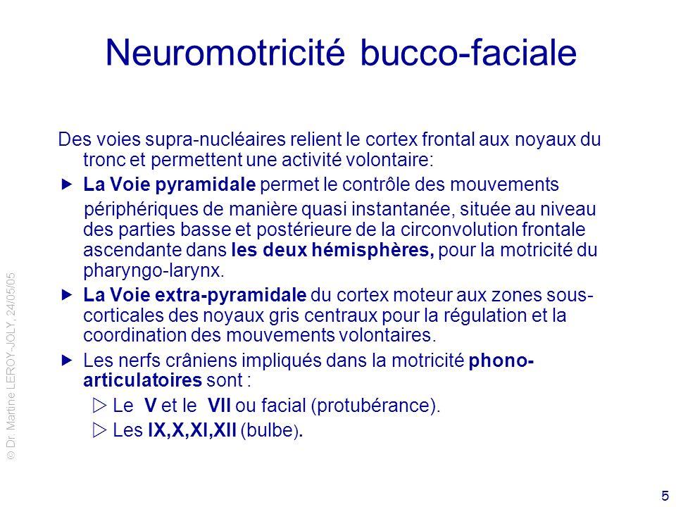 Dr. Martine LEROY-JOLY, 24/05/05 5 Neuromotricité bucco-faciale Des voies supra-nucléaires relient le cortex frontal aux noyaux du tronc et permettent