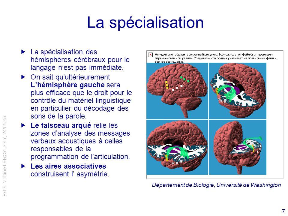 Dr. Martine LEROY-JOLY, 24/05/05 7 La spécialisation La spécialisation des hémisphères cérébraux pour le langage nest pas immédiate. On sait quultérie