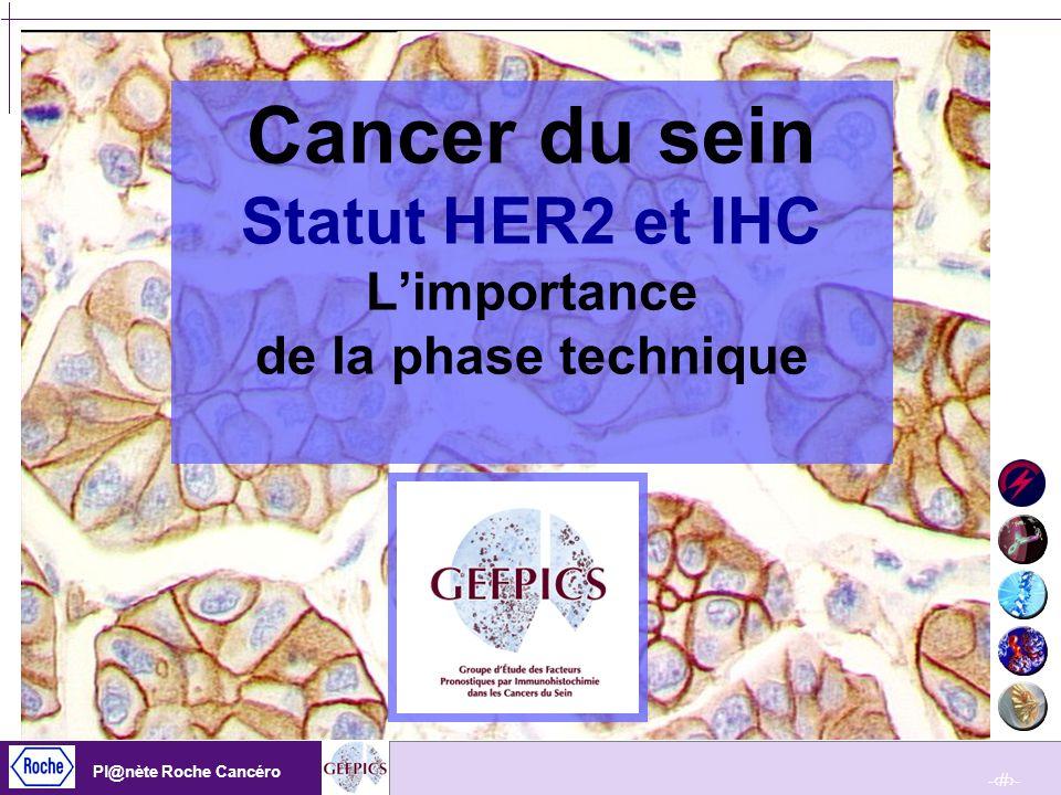 -12- Pl@nète Roche Cancéro -12- Pl@nète Roche Cancéro Critiques de létude Les niveaux damplification (rapport HER2/chromosome 17) sont deux à trois fois plus élevés dans la tumeur initiale par rapport aux CTC.