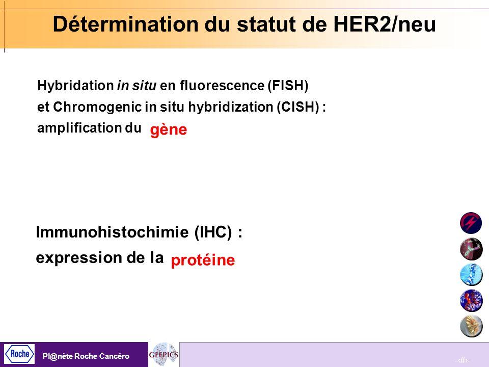 -96- Pl@nète Roche Cancéro -96- Pl@nète Roche Cancéro Etude initiale sur 33 patientes Le statut HER2 est concordant pour 29 patientes (11 +/+et 18 -/-).