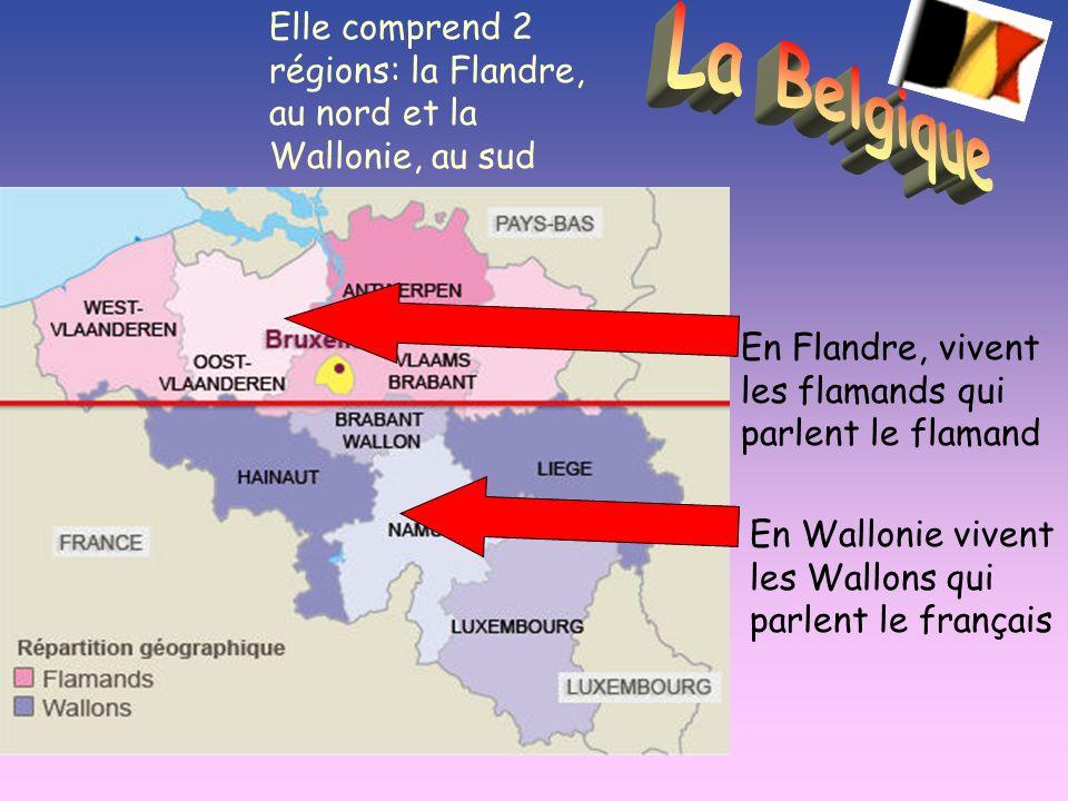 Elle comprend 2 régions: la Flandre, au nord et la Wallonie, au sud En Flandre, vivent les flamands qui parlent le flamand En Wallonie vivent les Wallons qui parlent le français