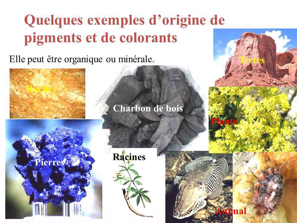 Quelques exemples dorigine de pigments et de colorants Elle peut être organique ou minérale. Pierres Terres Roches Charbon de bois Plante Racines Anim