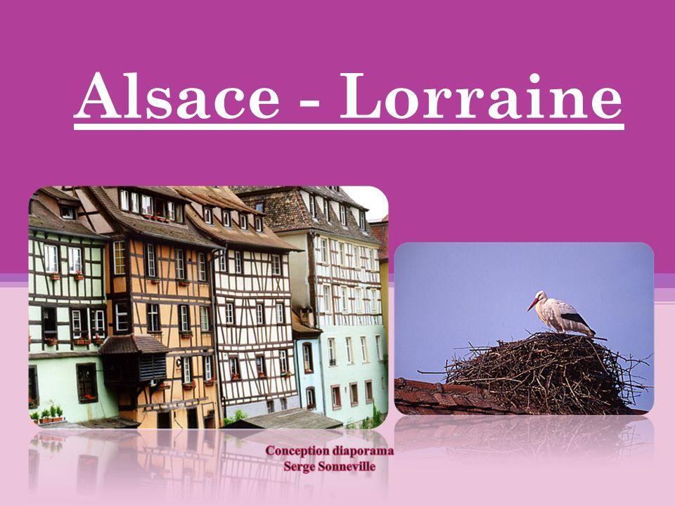 Lorraine A boire trop de mirabelle, on se retrouve à nager dans la Moselle