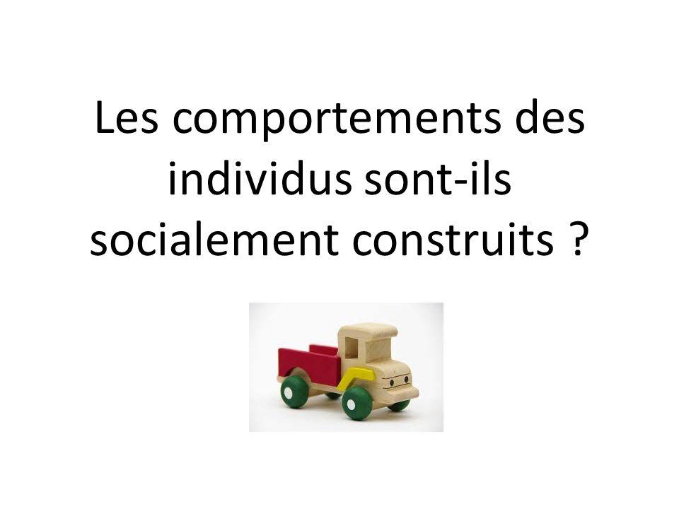Introduction La socialisation est l ensemble des mécanismes par lesquels les individus font l apprentissage des rapports sociaux et assimilent les normes, les valeurs et les croyances d une société.