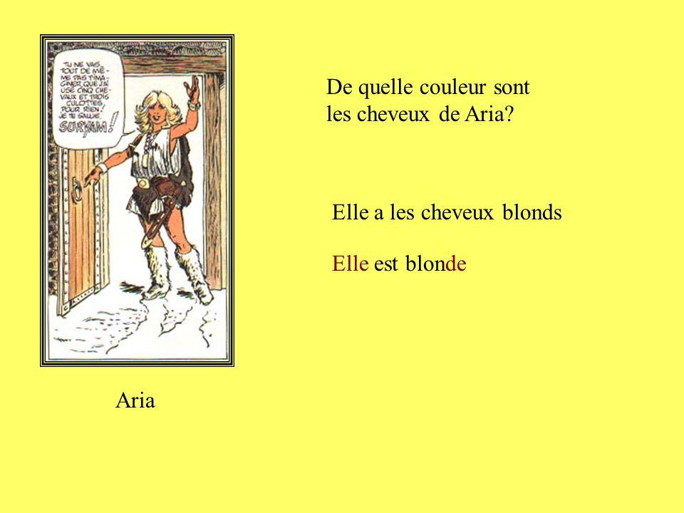 De quelle couleur sont les cheveux de Tintin? Tintin Il a les cheveux blonds Il est blond