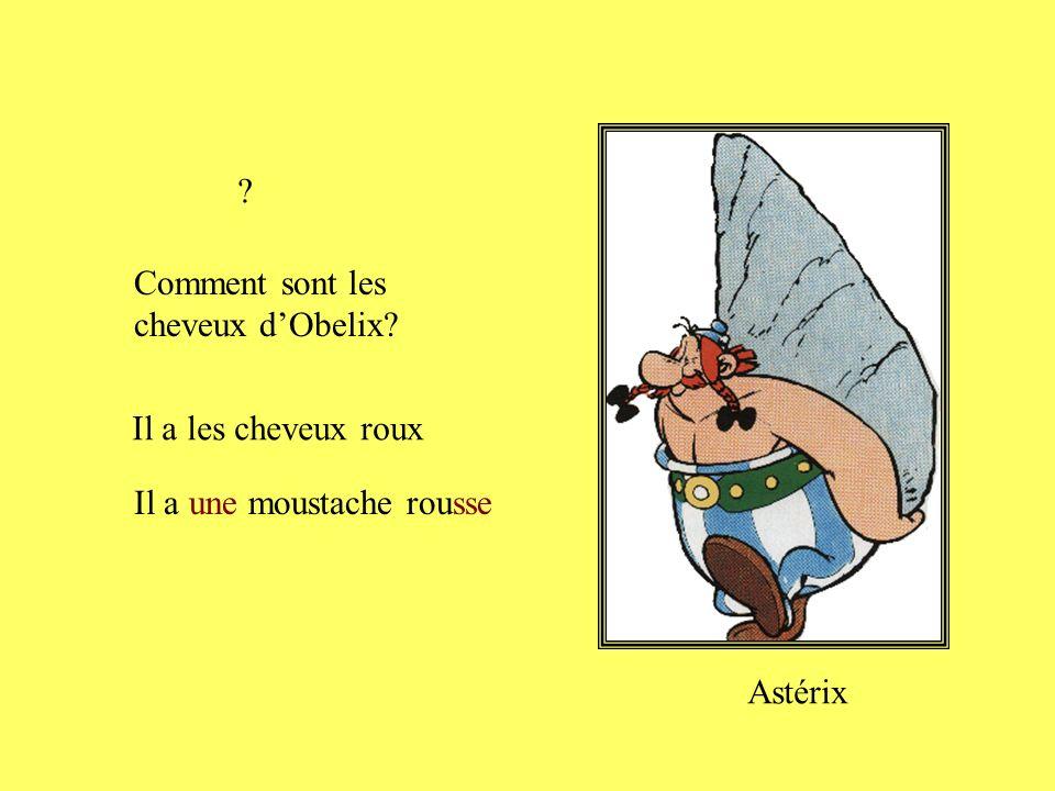 Comment sont les cheveux dAstérix? Il a les cheveux courts et blonds Asterix Il a une moustache blonde ?