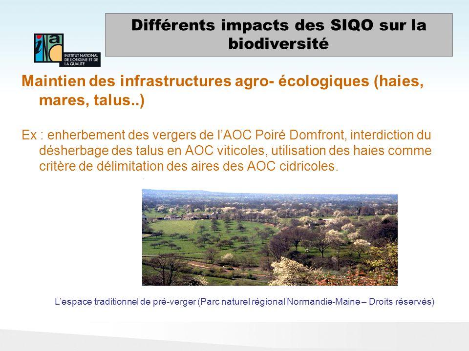 Maintien des infrastructures agro- écologiques (haies, mares, talus..) Ex : enherbement des vergers de lAOC Poiré Domfront, interdiction du désherbage