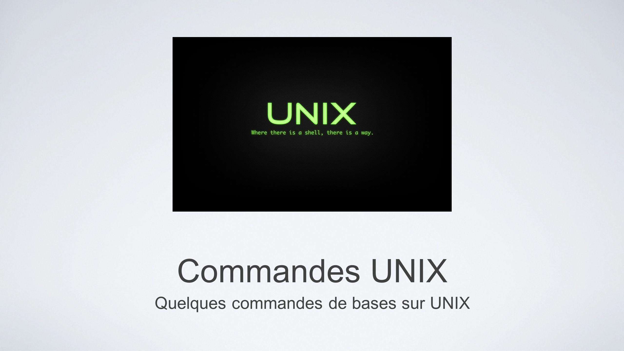 Commandes UNIX Quelques commandes de bases sur UNIX