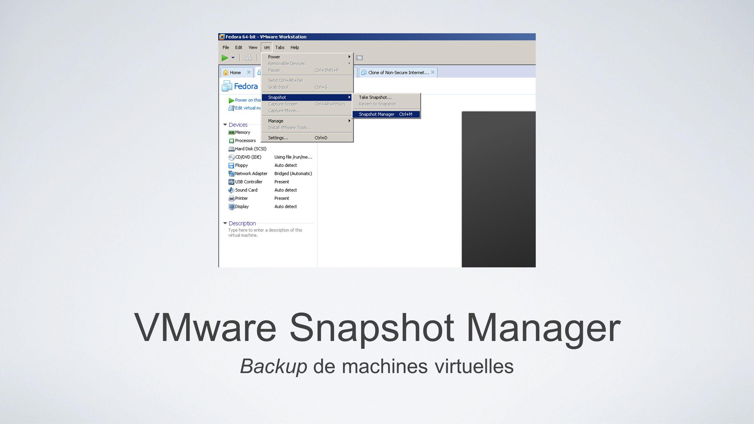 VMware Snapshot Manager Backup de machines virtuelles