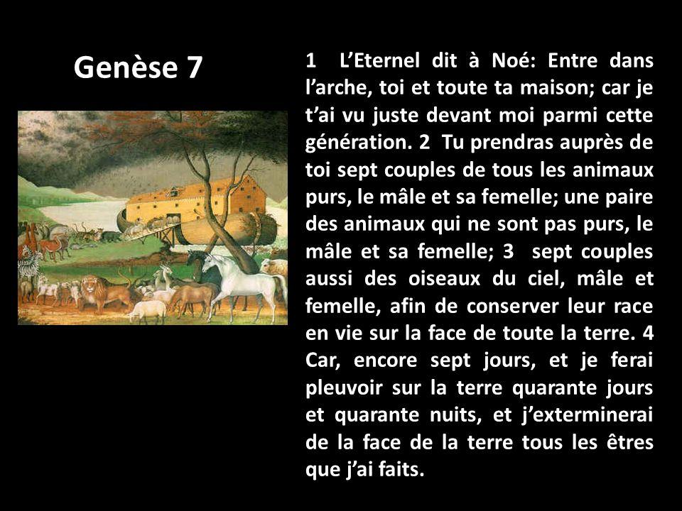 1 LEternel dit à Noé: Entre dans larche, toi et toute ta maison; car je tai vu juste devant moi parmi cette génération. 2 Tu prendras auprès de toi se