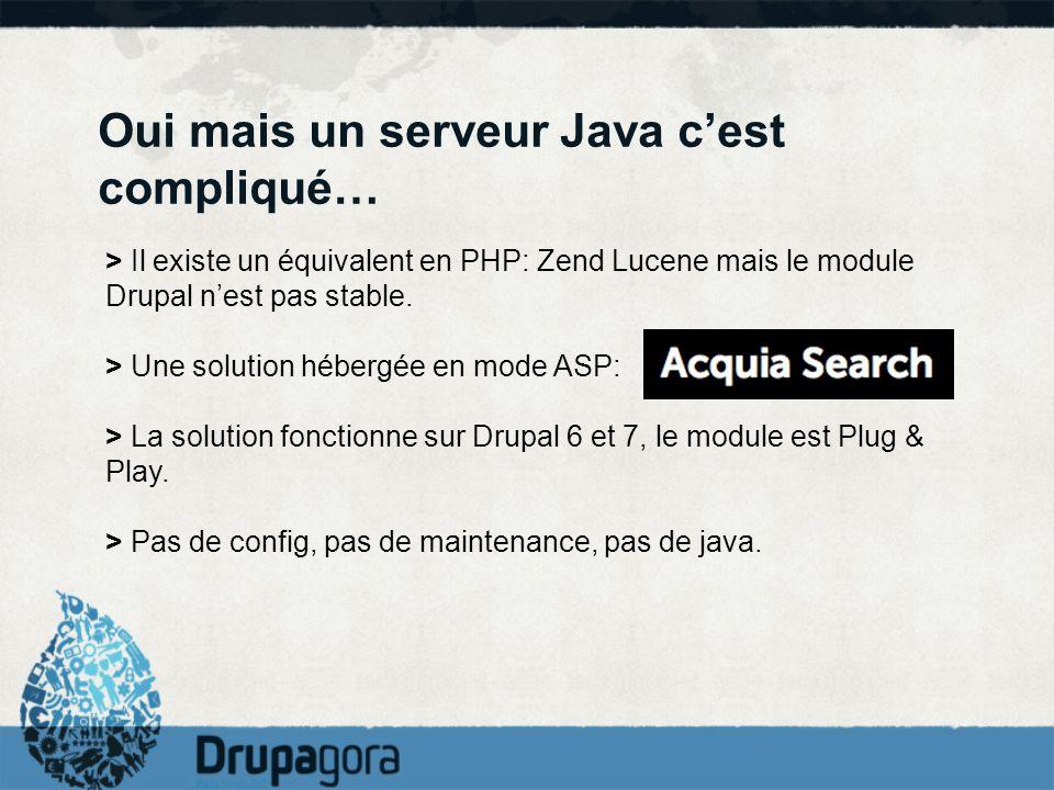 Oui mais un serveur Java cest compliqué… > Il existe un équivalent en PHP: Zend Lucene mais le module Drupal nest pas stable. > Une solution hébergée