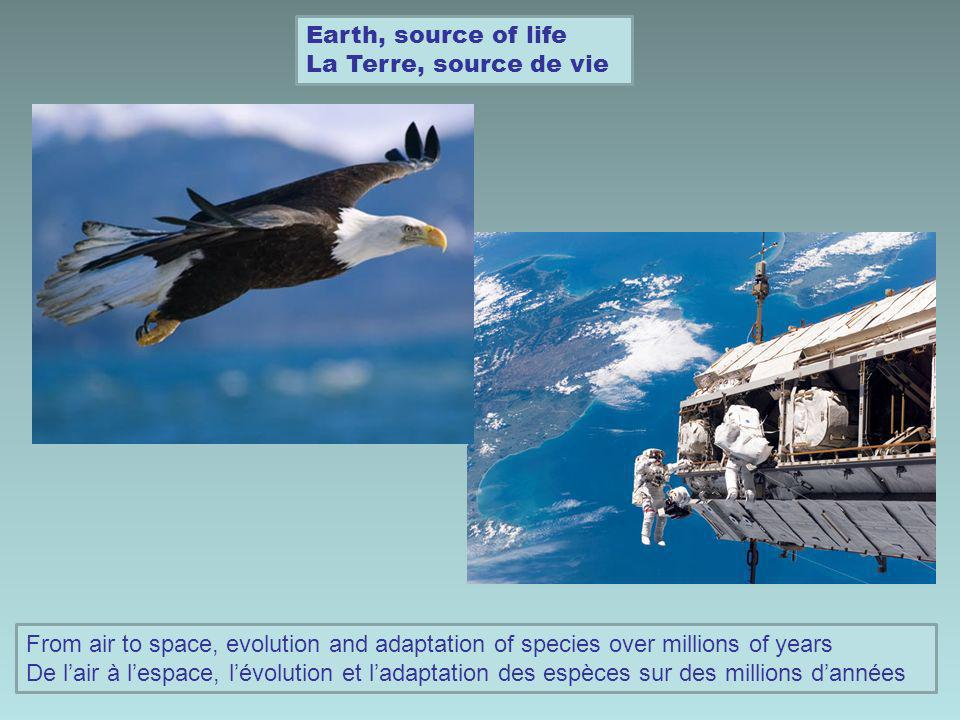 Earth, source of life La Terre, source de vie From air to space, evolution and adaptation of species over millions of years De lair à lespace, lévolut