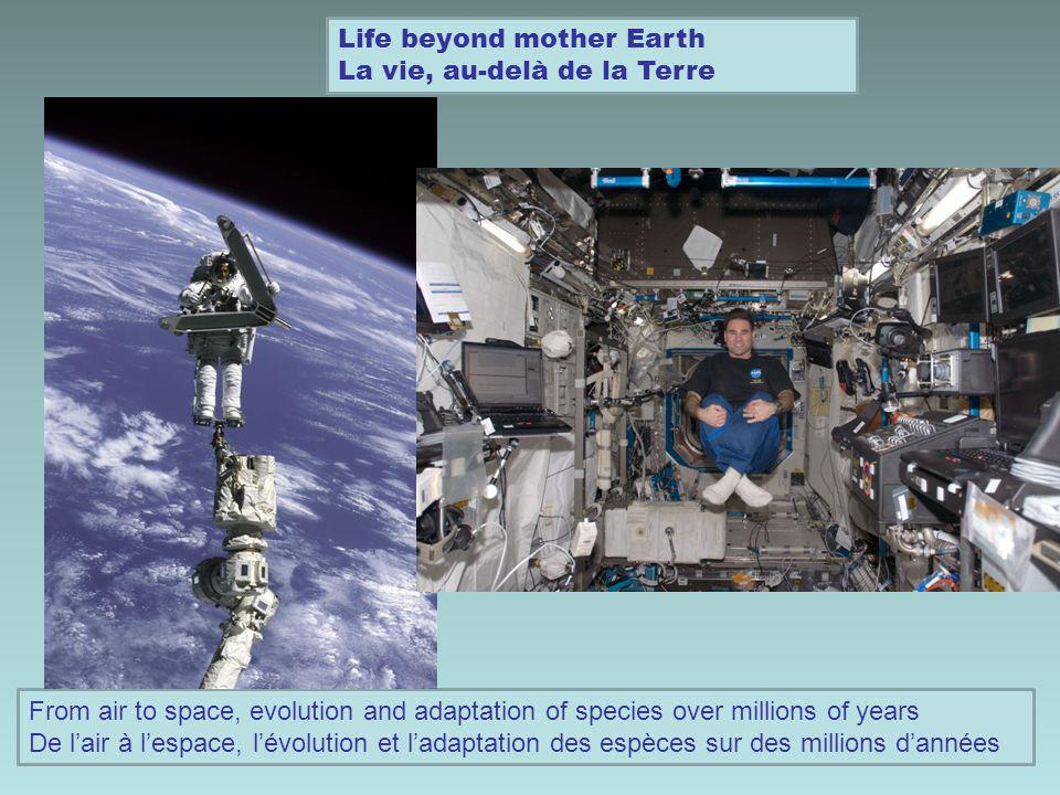 Life beyond mother Earth La vie, au-delà de la Terre From air to space, evolution and adaptation of species over millions of years De lair à lespace,