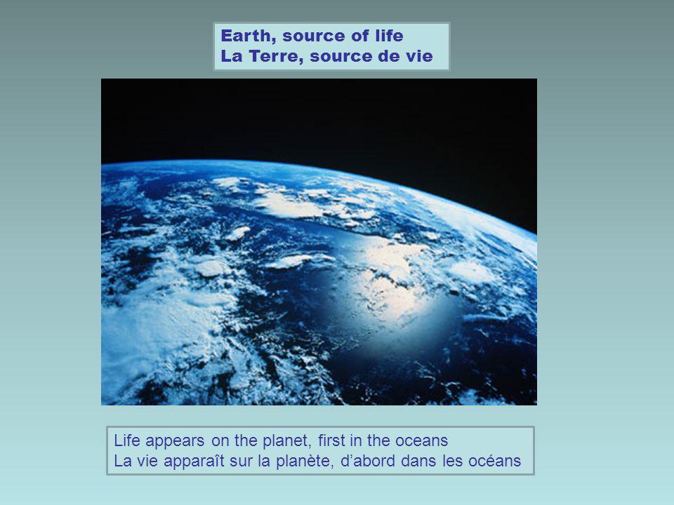 Earth, source of life La Terre, source de vie From water to land, evolution of species De leau à la terre, lévolution des espèces