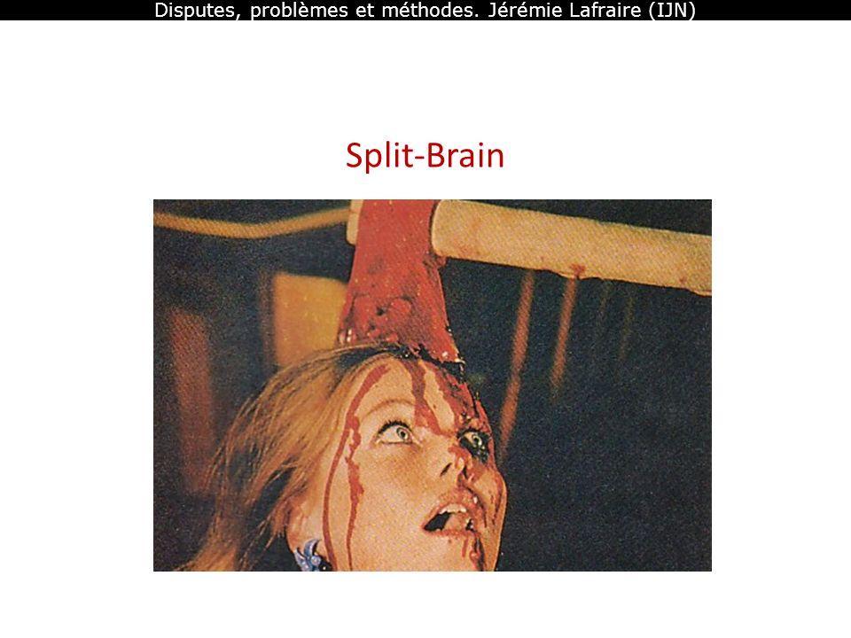Disputes, problèmes et méthodes. Jérémie Lafraire (IJN) Split-Brain