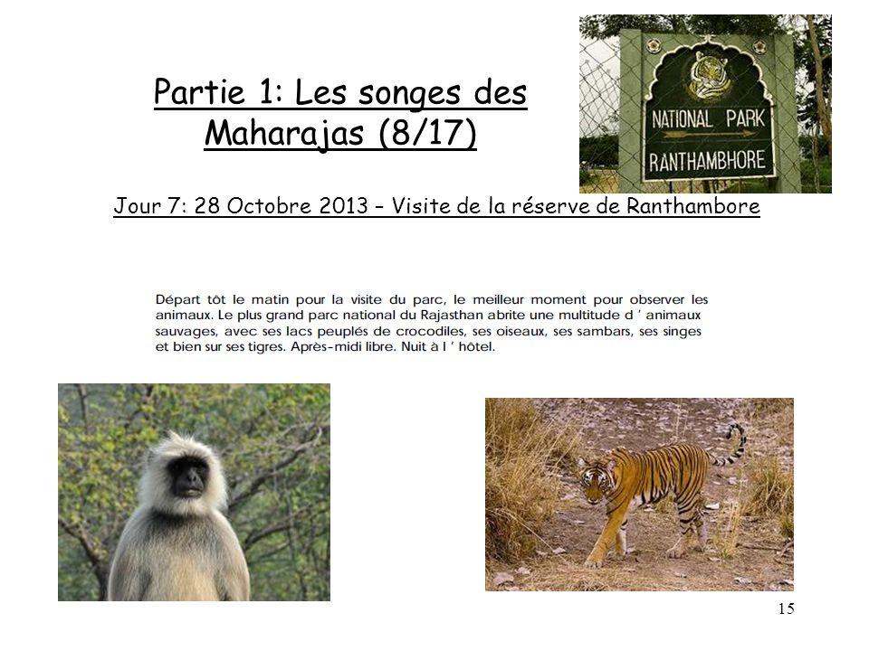 15 Partie 1: Les songes des Maharajas (8/17) Jour 7: 28 Octobre 2013 – Visite de la réserve de Ranthambore