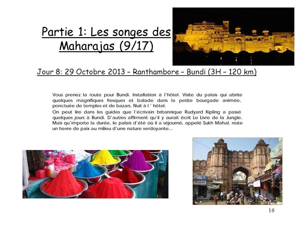 16 Partie 1: Les songes des Maharajas (9/17) Jour 8: 29 Octobre 2013 – Ranthambore – Bundi (3H – 120 km)
