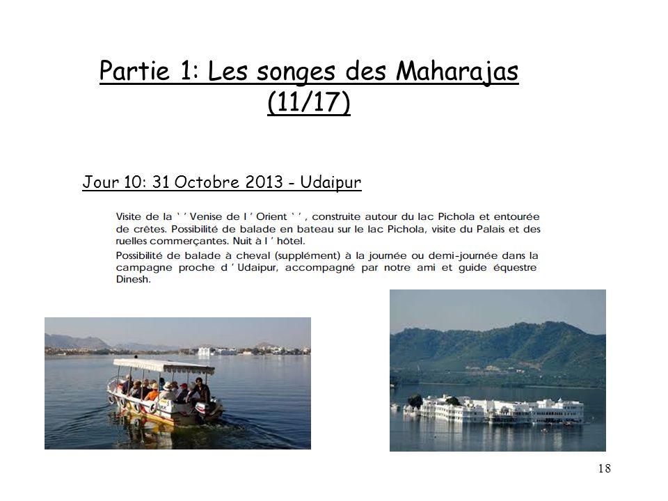 18 Partie 1: Les songes des Maharajas (11/17) Jour 10: 31 Octobre 2013 - Udaipur